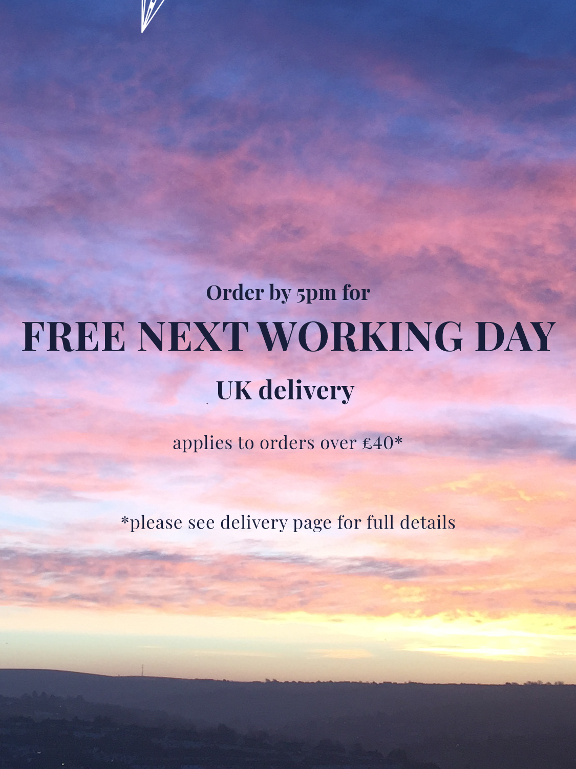 free next working day delivery